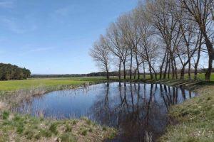 Senderismo, rutas a caballo, rutas en bicicleta - Casa rural de la Abuela Rufa en Tierra de Pinares - Segovia