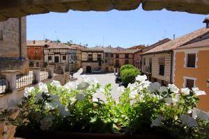 Visitar bodegas en Gumiel de Izán - Burgos