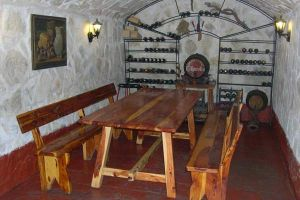 Casa rural con bodega merendero en la Ribera del Duero - La Palmera