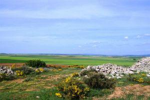 Casa rural situada en un entorno privilegiado - Comarca del Arlanza - Burgos