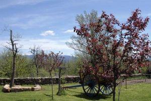 Casa rural con amplio jardín, huerto, barbacoa y terraza en Villanueva de Carazo