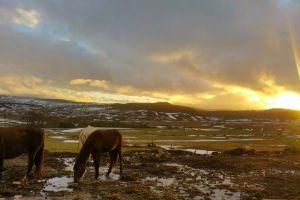 Senderismo y Paseos a caballo por el Monte Hijedo - Casa rural La Piedra en Arija