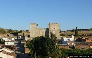 Visita Castillo de Encinas de Esgueva