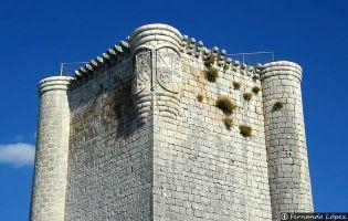 Visita Castillo de Íscar