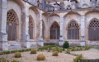 Claustro - Catedral de El Burgo de Osma
