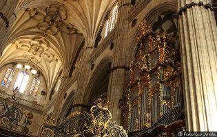 Órgano Interior - Catedral nueva de Salamanca