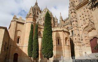 Portada del Patio Chico - Catedral nueva de Salamanca
