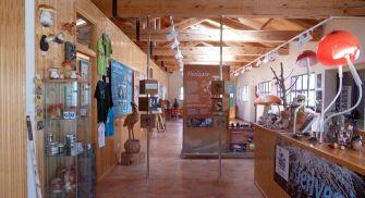 Visita Centro Micológico de Navaleno