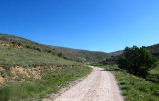 Sendero Cerro de San Blas - Fuentidueña
