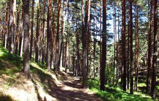El Chorro de Navafría - Segovia