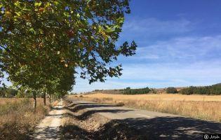 Camino de Santiago - Religos