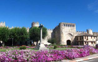 Pueblo amurallado en Segovia - Coca