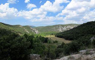 Qué ver en el Valle del Arlanza - Sabinares del Arlanza
