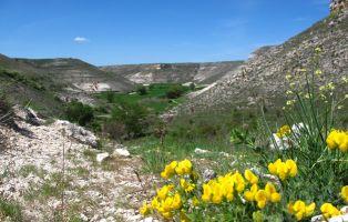 Vista panorámica del valle - Cuevas de Provanco