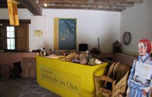 Museo El Molino de los Ojos - San Esteban de Gormaz