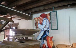Actividades para niños - San Esteban de Gormaz