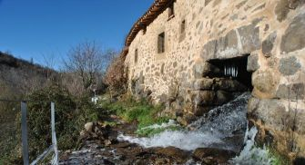 Actividades Valle del Corneja - La Trocha de Hoyorredondo