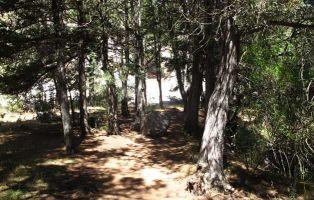 Cascada de La Fuentona - Senderismo Soria