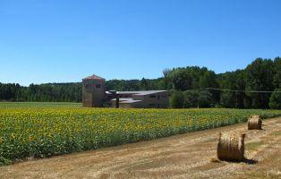 Casa del Sabinar - Muriel de la Fuente - Soria
