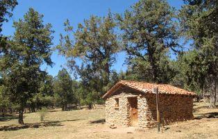 Dehesa de Carrillo - Calatañazor - Soria