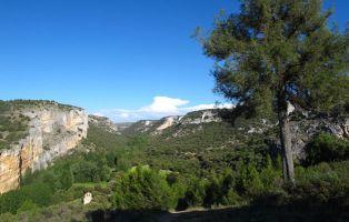 Qué ver en Segovia - Hoces del Riaza y el Sabinar de Hornuez