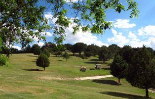 Sabinar de Hornuez - Bosque de sabinas en Moral de Hornuez - Segovia