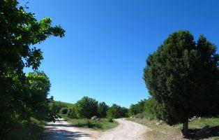 Tramo Senda del Monte - Laguna de Contreras