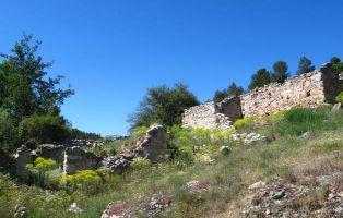 Ruinas del Molino del Ladrón - Tierra de Pinares