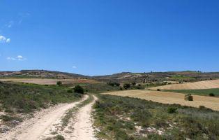 Tramo del sendero - Maderuelo - Segovia