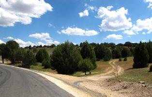 Carretera al Santuario de Hornuez - Moral de Hornuez