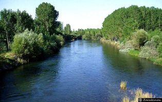 Río Esla - Gradefes