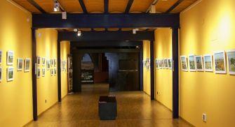 Museo del Cerrato Castellano - Baltanás