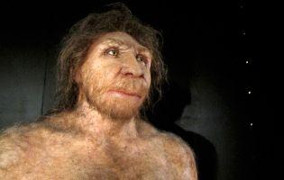 Miguelón - Figura Museo de la Evolución Humana