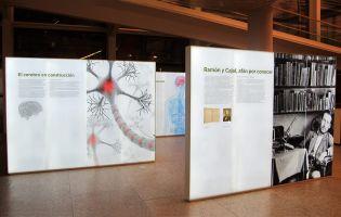 Exposiciones para niños - Museo de la Evolución Humana