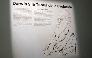 Viajar con niños - Burgos - Museo de la Evolución Humana