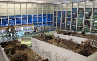 Actividades para niños en Burgos - Museo de la Evolución Humana