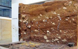 Horarios y Tarifas Museo de la Evolución Humana - Burgos