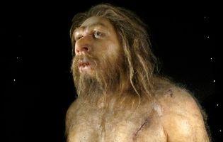 Reconstrucciones Museo de la Evolución Humana - Burgos