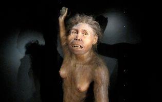Evolución humana - Sierra de Atapuerca - Burgos