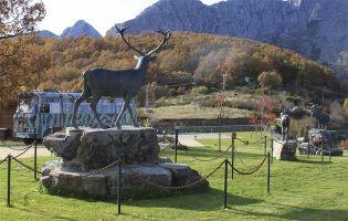 Museo de la Fauna Salvaje - Valdehuesa