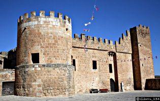 Castillo Monteagudo de las Vicarías