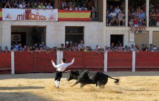 Festejos taurinos - Plaza del Coso de Peñafiel - Valladolid