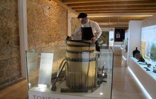 Qué visitar en Valladolid - Museo de elaboración del Vino - Castillo de Peñafiel