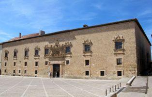 Ruta por Peñaranda de Duero y Alrededores - Palacio de Avellaneda