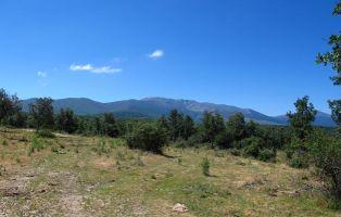 Sierra de Ayllón - Senderismo Segovia