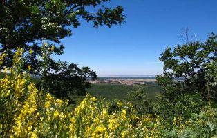 Panorámica de Riaza - Camino de la Ermita de Hontanares - Segovia