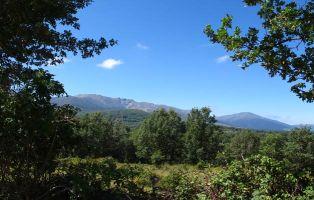 Sierra de Ayllón - Riaza - Segovia