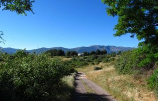 El Camino de Riofrío - Senderismo Segovia