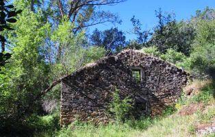 Molino Viejo - El Camino de Riofrío - Riaza