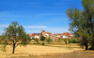 Bodegas en La Horra - Zarceras cónicas - Ribera del Duero